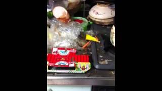 ゴキブリ屋敷3 thumbnail