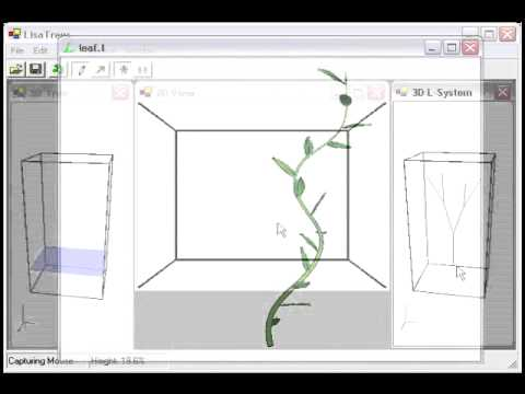 Modeling Plant Variations through 3D Interactive Sketches