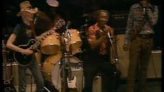 Muddy Waters - Got My Mojo Working - ChicagoFest 1981