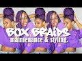 BOX BRAIDS MAINTENANCE & STYLING |