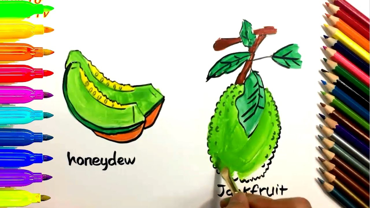 How to Draw and Color HONEYDEW + JACKFRUIT Coloring Pages for Kids ...