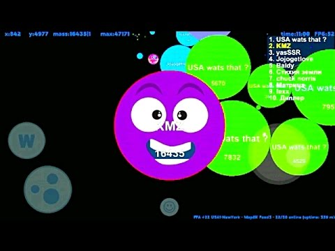 ✔🔥Petridish (agar.io) Giant Fight🔥✔