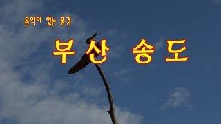 음악이있는풍경 부산송도/ 노래 부산아지매