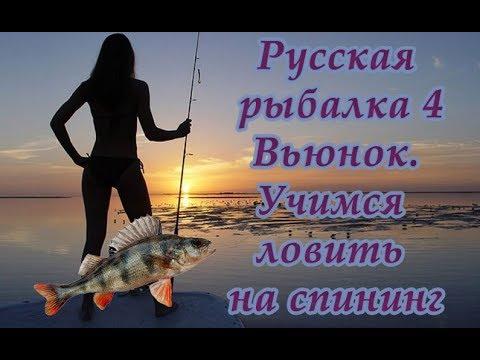 русская рыбалка 4 ловля на болонское удилище
