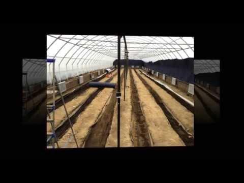 видео: Строительство теплицы. Фаза №3