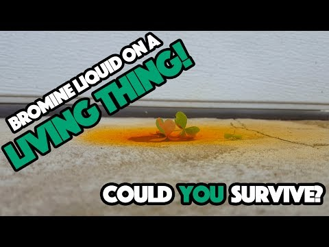 What would happen if your poured LIQUID BROMINE on a LIVING THING?