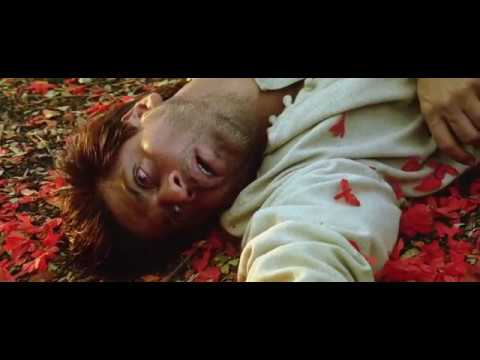 Devdas Movie End Scene | Very Emotional | Shahrukh Khan And Aishwariya Rai
