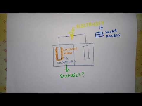 A Concept Platform for Artificial Photosynthesis