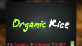 Fresh Start Organics 2010