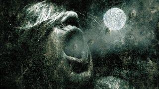 E-Mantra - Nocturne (DJ Zen's Special Version) [Visualization]