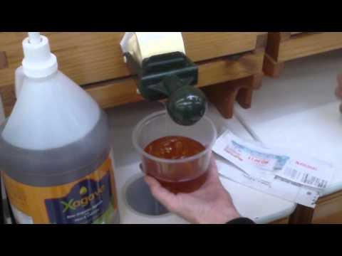 Organic Almond butter and Blackberry honey
