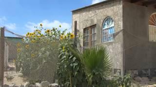 Beauty of the Barrio San Rafael Rocky Point Puerto Penasco Mex…