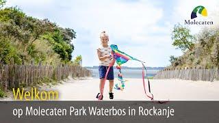 Welkom op Molecaten Park Waterbos, Rockanje, Zuid-Holland