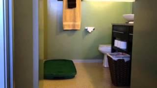 Elecktra Uses Go-doggy-go Indoor Dog Potty