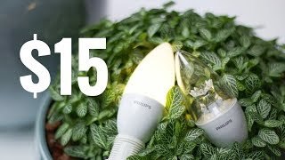 The 15$ XIAOMI Zhirui PHILIPS  Smart E14 LED Bulb 🔥