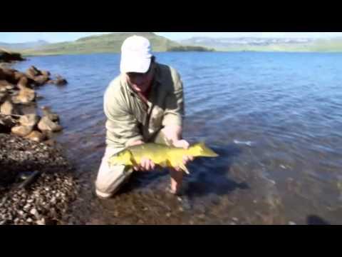 Sterkfontein Fishing