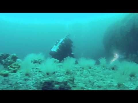 Sammy Dives U-861