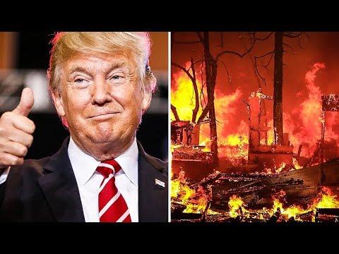 Make America Rake Again? Trump Claims Raking Will Prevent Forest Fires
