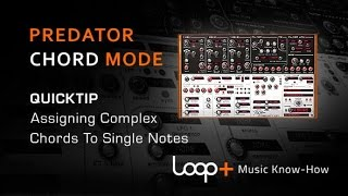 Assigning Complex Chords To Single Notes In Predator - Loop+ Quick Tip