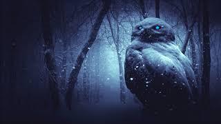Dark Lullaby Music - Snowy Owl Lullaby