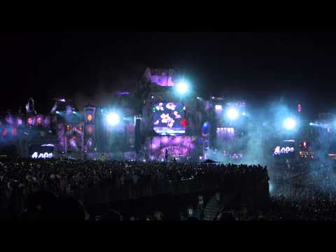 Tomorrowland 2013 Avicii Addicted to You