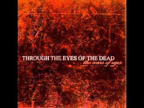 Through The Eyes Of The Dead - Between The Gardens That Bathe In Blood