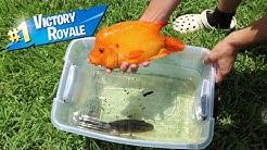 FISH BATTLE ROYALE In Plastic tub