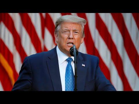 Violent protests 'domestic acts of terror': Trump