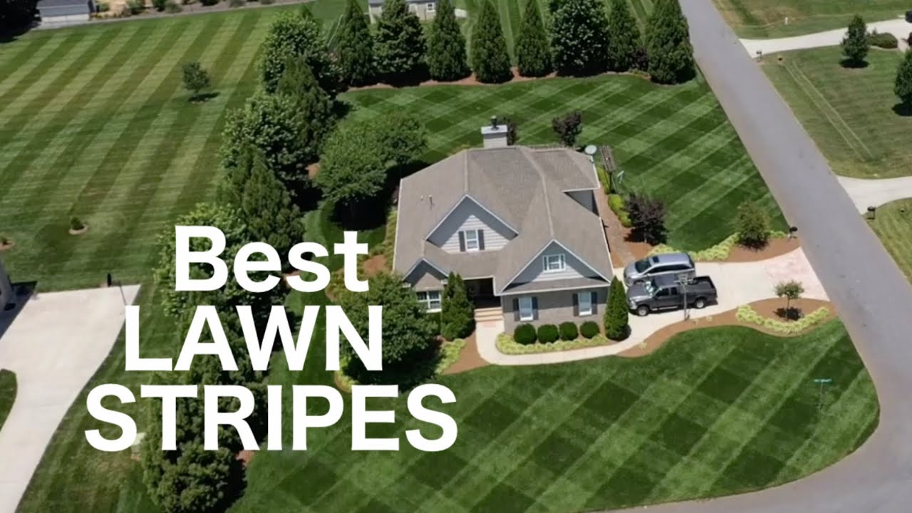How To Have the BEST Lawn Stripes in YOUR Neighborhood | BEAST Lawn Mower