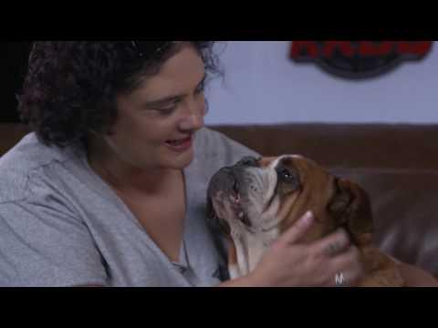 KROQ To The Rescue: Southern California Bulldog Rescue