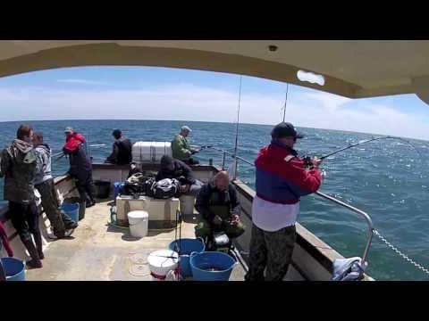 SEA FISHING OUT OF KILMORE QUAY