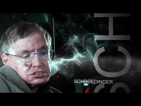 Brief History of Stephen Hawking