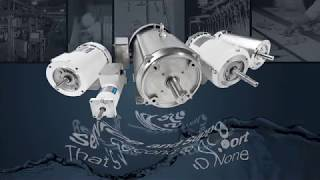 Leeson Washguard Motors: The Answer to Tough Washdown Applications