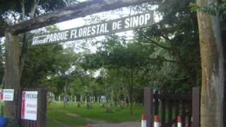pontos turisticos de Sinop MT