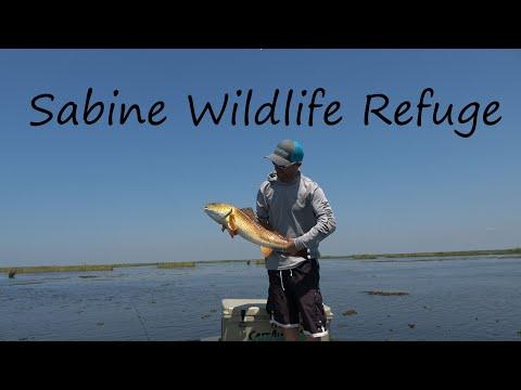 Sabine Wildlife Refuge