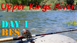 Kings River Upper Wild Trout Section BFS Lure Fishing Day 1