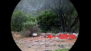 Extreme Long Range Ground Squirrel Destruction!