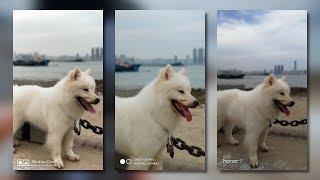 OnePlus 5 vs Xiaomi MI 6 vs Honor 9 Camera Test Comparison: A Tight Game![4K]