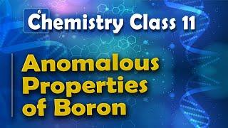 Anomalous Properties of Boron - P Block Elements - Chemistry Class 11