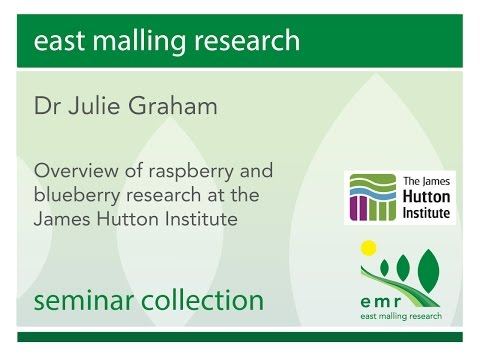 Overview of raspberry and blueberry research at the James Hutton Institute Dr Julie Graham