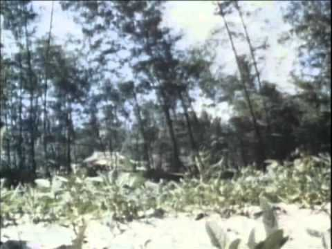 Secrets of War - Vietnam, A War Unwanted - Hidden In Plain Sight