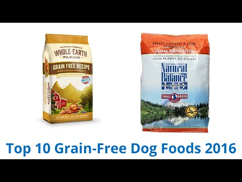 10 Best Grain-Free Dog Foods 2016