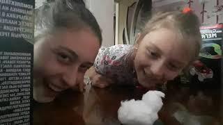 Во что поиграть в младшей сестрой или братом? / Видео