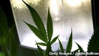 Washington D.C. Legalizes Recreational Marijuana