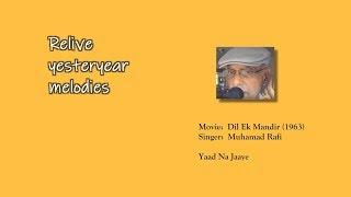 Yaad Na Jaaye I Hindi Karaoke