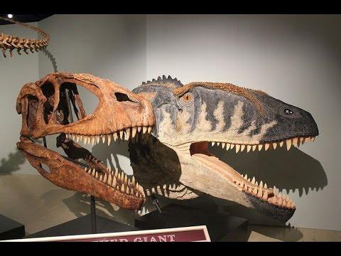 สุดยอดสารคดี -- T-Rex ไดโนเสาร์พันธุ์เพชรฆาต