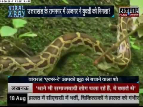 Most Viral Video: Python eats Girl alive ,Python Swallowed alive girl