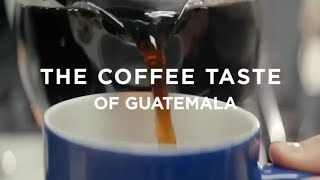 Guatemala Coffee Review: Regional Differences (and Best Coffees!)