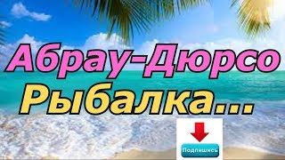 #Рыбалка в Абрау Дюрсо Карася и Толстолоба на 10кг)))