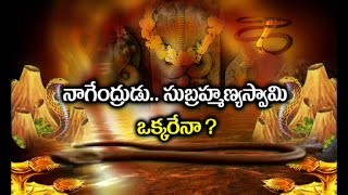 Are Nagendrudu and Subramanya Swamy One and The Same ? | Nagula Chavithi Special Dharma Sandehalu